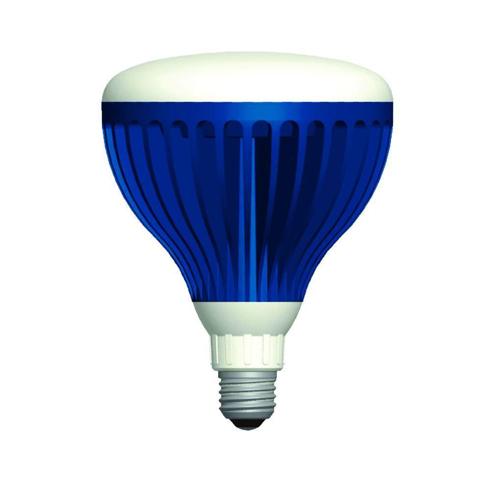 Aqua Brite 22 Watt Pure White 120 Volt Led Pool Light Bulb Abpw120 for proportions 1000 X 1000