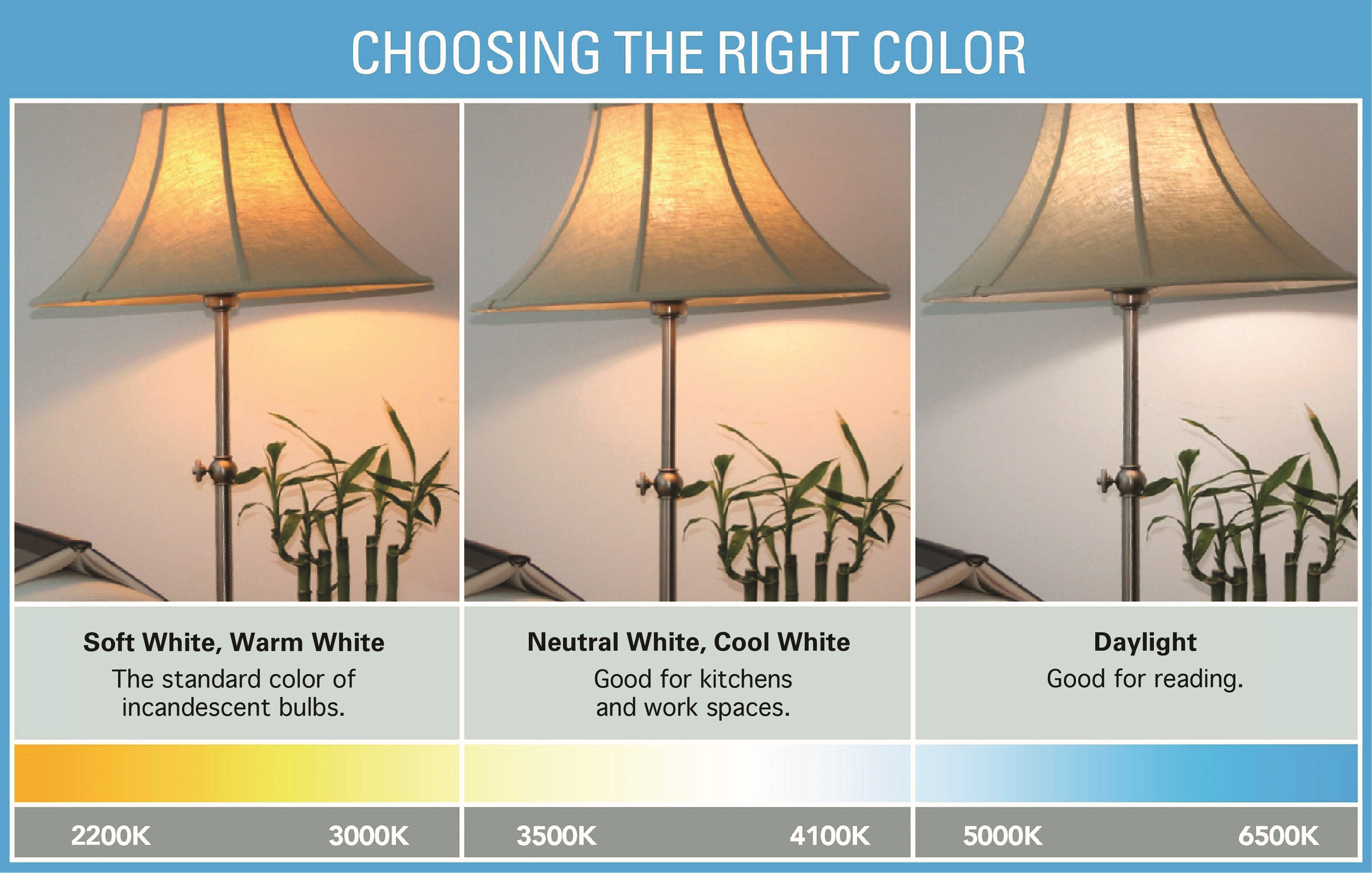 Color And Mood Products Energy Star Inside Measurements 3648 X 2321