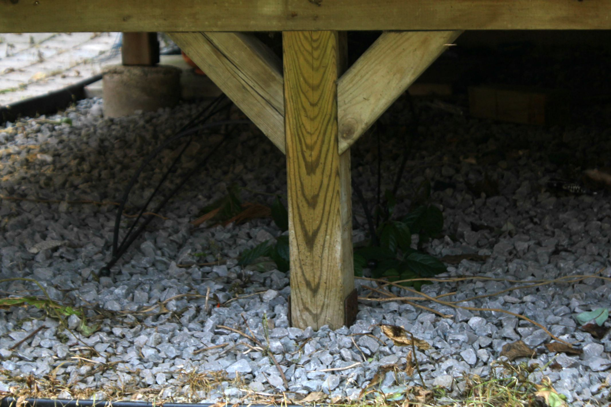 Turtles And Tails Under Deck Enclosure With Access Door in dimensions 2132 X 1421